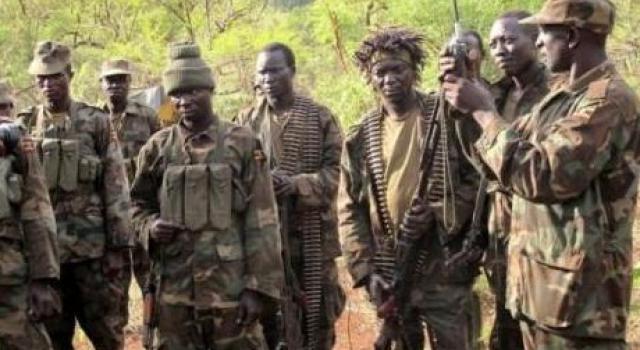 Beni : Une nouvelle incursion des présumés ADF à Kalebya et Kavasewa