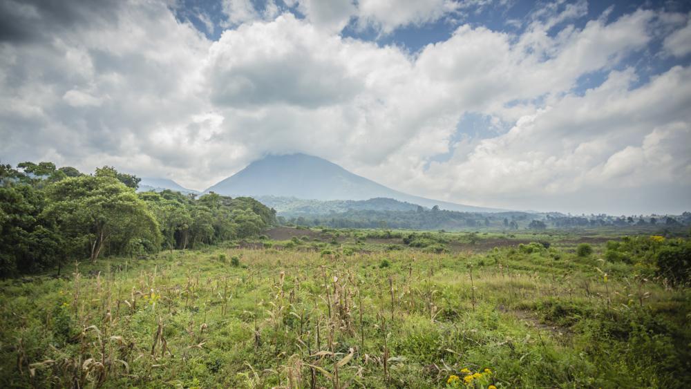 Nord-Kivu : Quinze paysans de Bashu kidnappés par des inconnus dans le Graben