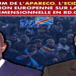 RDC : Marche de Bruxelles, Martin Fayulu et Honoré Ngbanda désormais alliés des circonstances