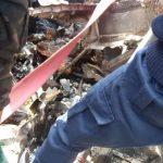 RDC : Aucun survivant dans le crash d'un petit avion sur un quartier populaire de Goma